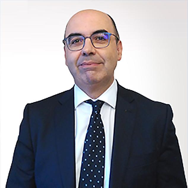 Prof. Dr. JOSÉ MARTÍN Y PÉREZ DE NANCLARES